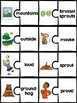 Phonics Puzzles: diphthongs