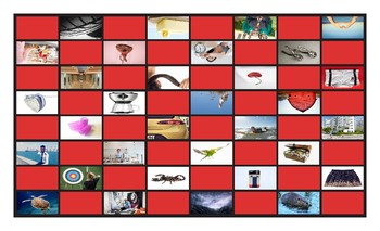 Phonics R Controlled Vowels ar-or-er-ir-ur Photo Checkerboard Game
