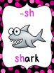 Phonics Reference Posters {Digraph}