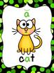 Phonics Reference Posters {short vowel cvc and long vowel cvce}