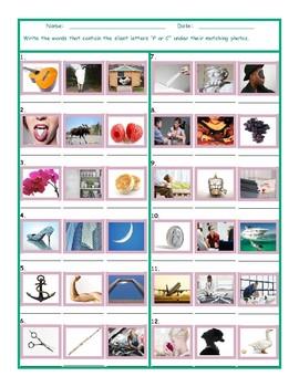 Phonics Silent Letters P-C Worksheet