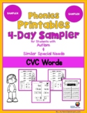 Phonics Reading Skills Printables for Students with Autism