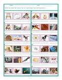 Phonics Vowel Team AY Photo Worksheet
