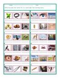 Phonics Vowel Team EA Photo Worksheet