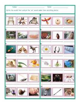 Phonics Vowel Team OE Photo Worksheet