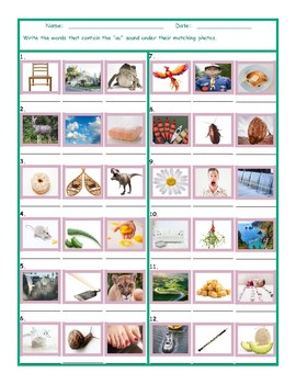 Phonics Vowel Team OU Photo Worksheet