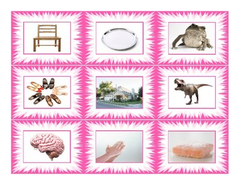 Phonics Vowel Teams ai-ay-oa-oe-ou-au Photo Card Game