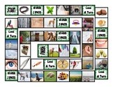 Phonics Vowel Teams ee-ea-ei-ey-ie-ui Photo Board Game