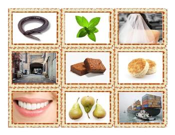 Phonics Vowel Teams ee-ea-ei-ey-ie-ui Photo Card Game
