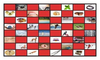 Phonics Vowel Teams ee-ea-ei-ey-ie-ui Photo Checkerboard Game