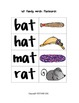 Phonics & Word Families- at words!