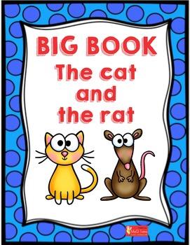 Phonics Word Family At Big Book