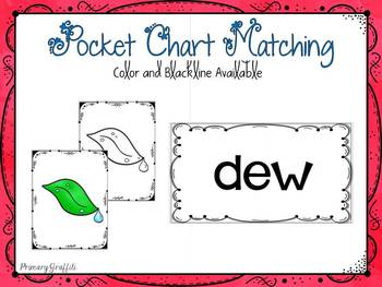 Phonics Word Work {ew, ue}