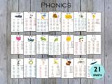 Phonics Words List, Phonics Reading Cards Printable, T-197