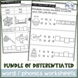 Phonics Worksheet BUNDLE- Differentiated for Special Education