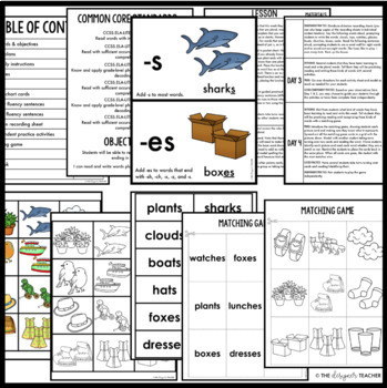 Phonics by Design Regular & Irregular Plural Words Unit BUNDLE {S, ES, IES, VES}
