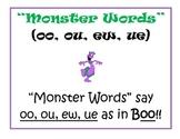 "Phonics: oo,ew,ou,ue ""Monster Words"""