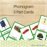 Phonogram 3-Part Cards