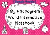 Phonogram Interactive Notebook { sample freebie }