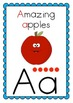 Phonogram Posters/Flashcards (suitable for use with LEM Phonics Program)