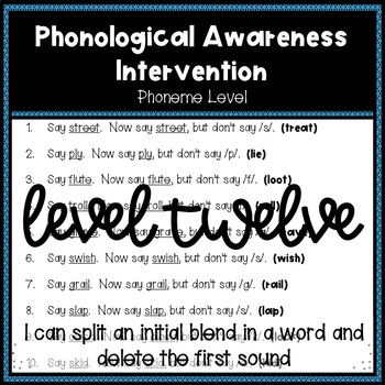 Phonological Awareness Intervention Level 12 (Phoneme Level)