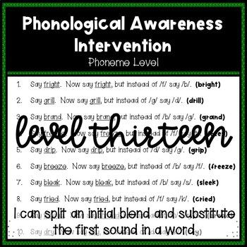 Phonological Awareness Intervention Level 13 (Phoneme Level)
