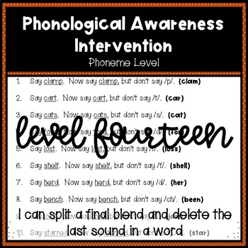 Phonological Awareness Intervention Level 14 (Phoneme Level)