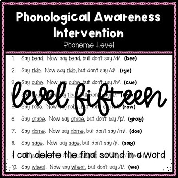 Phonological Awareness Intervention Level 15 (Phoneme Level)