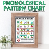 Phonological Pattern Chart for Speech Therapy