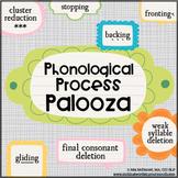Phonological Process Palooza   Speech Therapy Activities