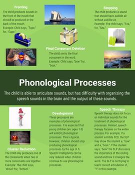 Phonological Processes Handout