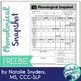 Phonological Snapshot for SLPs - Freebie