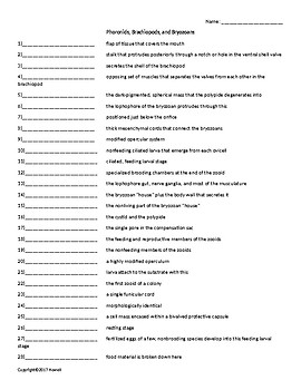 Phoronids, Brachiopods, and Bryozoans Quiz or Worksheet for Invertebrate Biology
