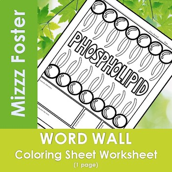Phospholipid Word Wall Coloring Sheet