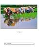 Photo Analysis Template