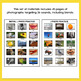 Photo Articulation Worksheets