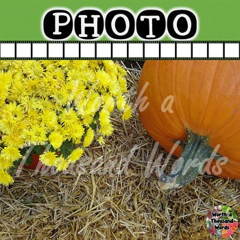 Photo: Autumn Pumpkin and Yellow Mum