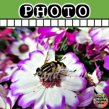 Photo: Bee Pollination