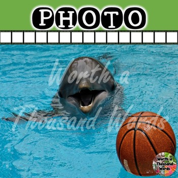 Photo: Dolphin with Basketball