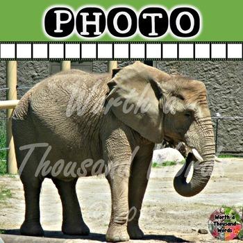 Photo: Elephant