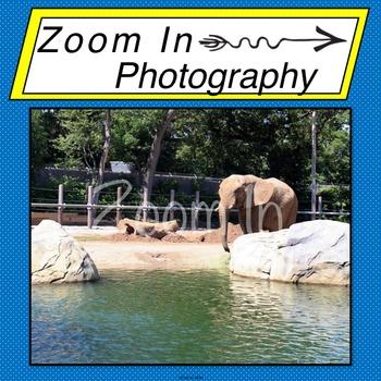 Stock Photo: Elephant (b)