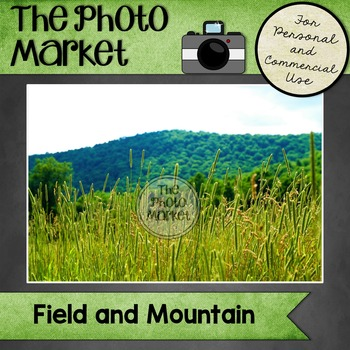 Photo: Field and Mountain