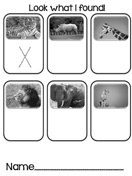 Photo Find!  African Animals