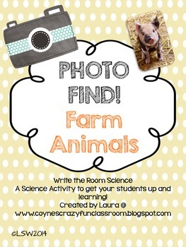 Photo Find! Farm Animals
