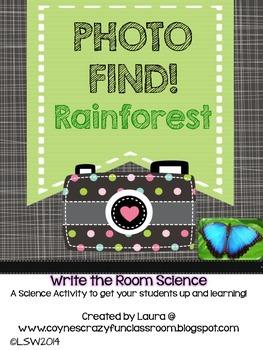 Photo Find!  Rainforest