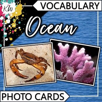 Ocean Vocabulary Photo Flashcards