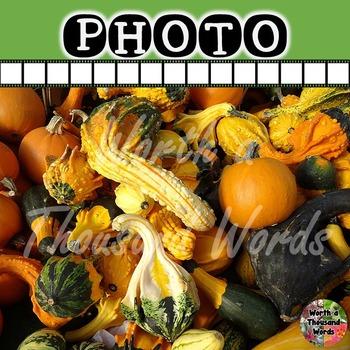 Photo: Autumn Gourds (1)