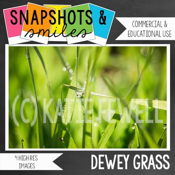 Photo: Grass: Dew