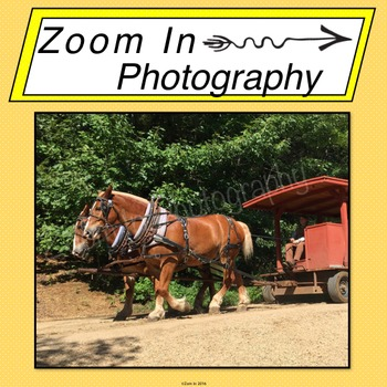 Stock Photo: Pioneer Revolutionary War Period Horses and Carriage (a)