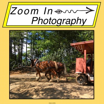 Stock Photo: Pioneer Revolutionary War Period Horses and Carriage (b)
